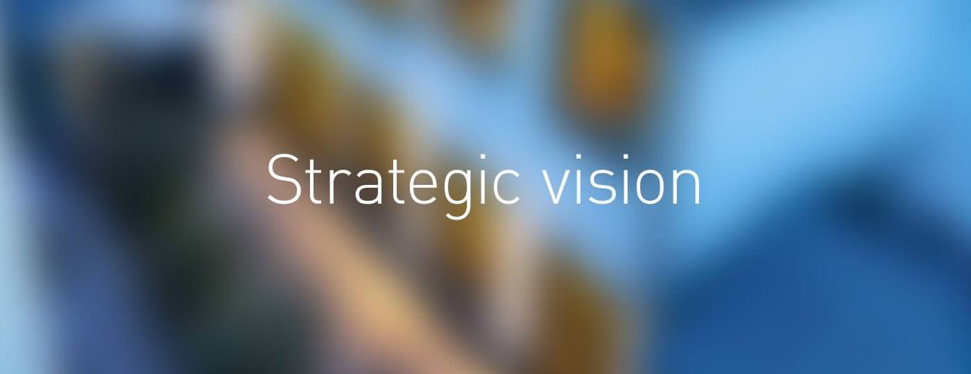 Strategic vision